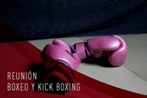 reunion boxeo y kick boxingg